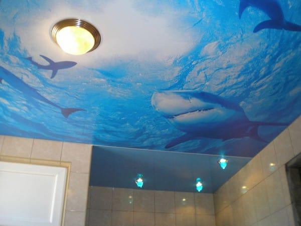 Натяжные потолки фотопечать акула одноуровневые для ванной