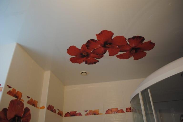 Натяжные потолки матовые роспись цветы одноуровневые для ванной