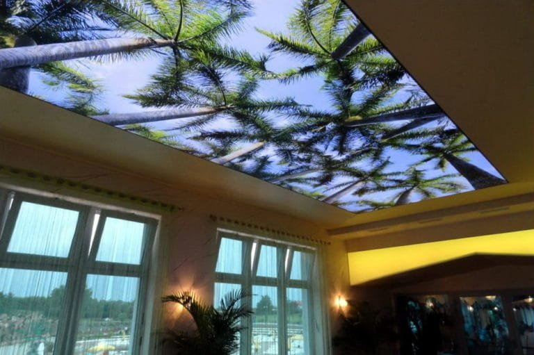 Натяжные потолки с фотопечатью 3D