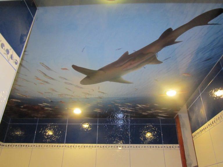 Натяжные потолки с фотопечатью 3D для ванной