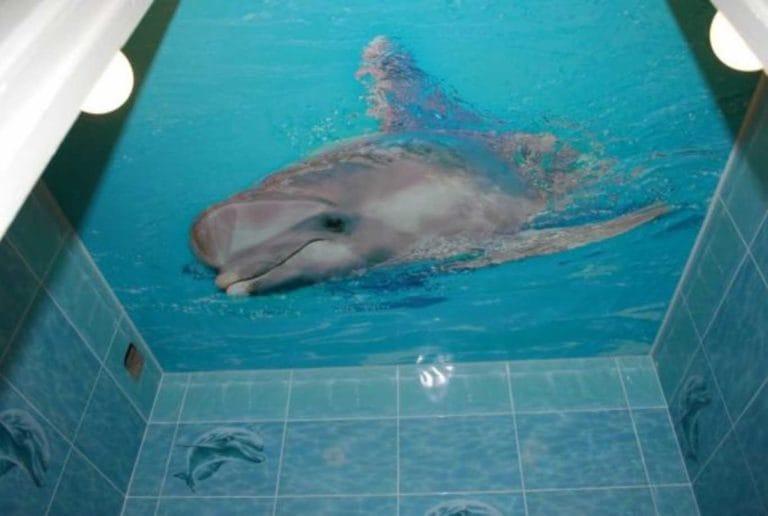 Натяжные потолки одноуровневые с фотопечатью 3D для ванной