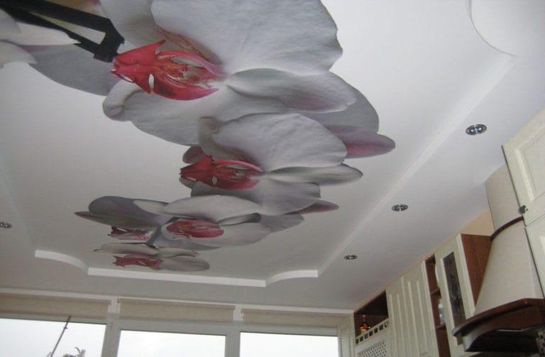 Натяжные потолки фотопечать 3D орхидеи