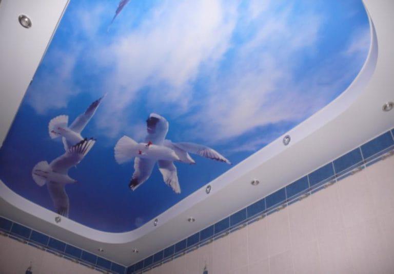 Натяжные потолки фотопечать небо и птицы для ванной